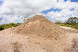Digity Mud Volcano